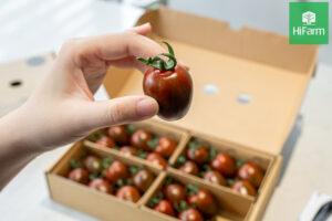Ăn cà chua liên tục có tốt không