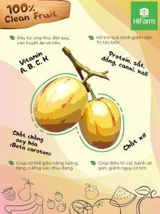 Nguồn gốc xuất xứ của Dưa Pepino - Tân binh đáng gờm trong các loại trái cây