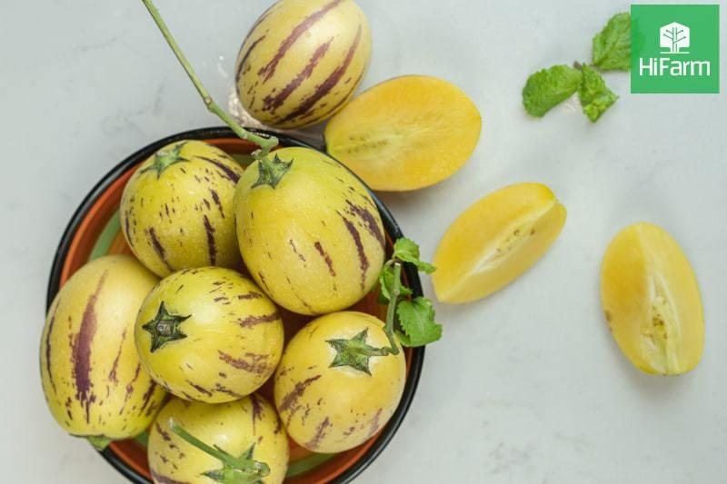 Hướng dẫn sử dụng Dưa Pepino giúp hấp thu nguồn dinh dưỡng