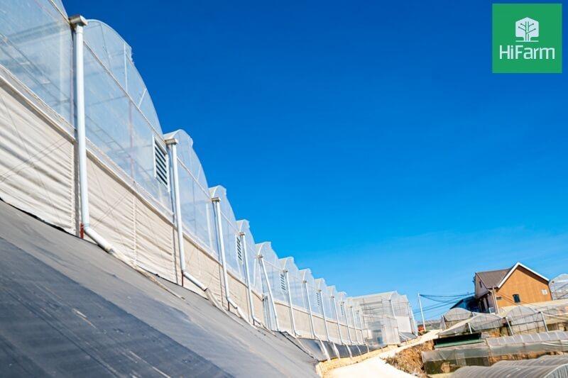 Ý tưởng khởi nghiệp từ nông nghiệp công nghệ cao - Xu hướng phát triển hiện nay