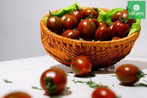 cà chua trái cây bán ở đâu