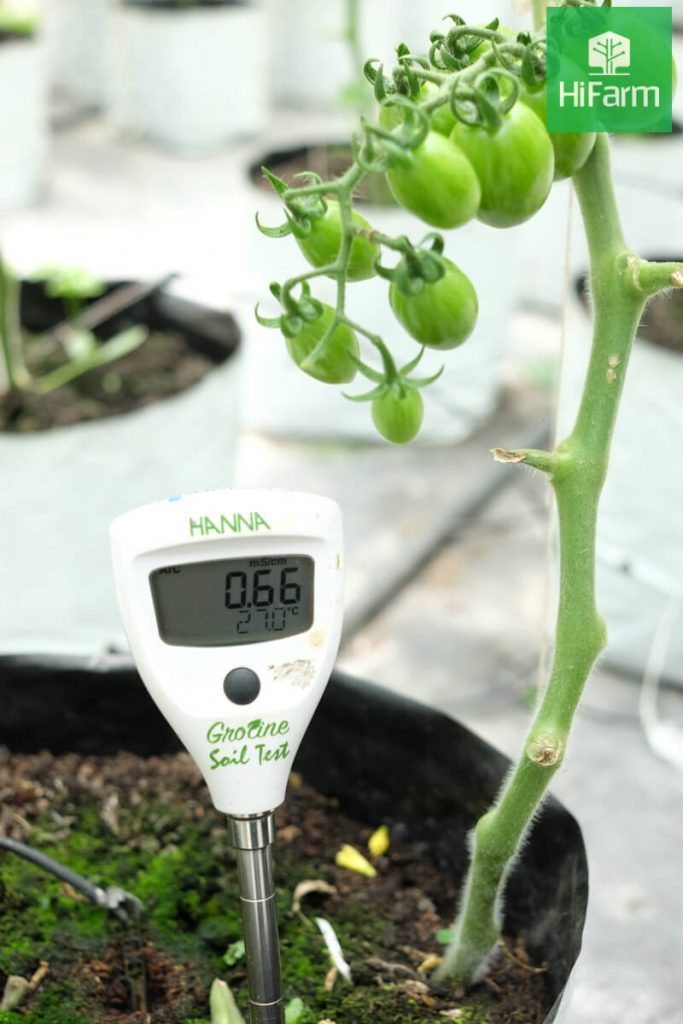 Áp dụng công nghệ cao trong nông nghiệp và bối cảnh hiện nay?