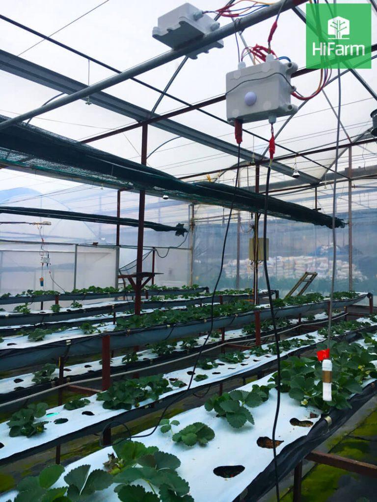 kỹ thuật nông nghiệp công nghệ cao