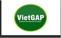 logo-vietgap.png
