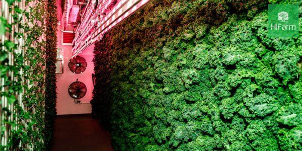 nông nghiệp công nghệ cao trên thế giới