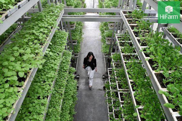 Nông nghiệp xanh thông minh và một số mô hình đột phá trên thế giới