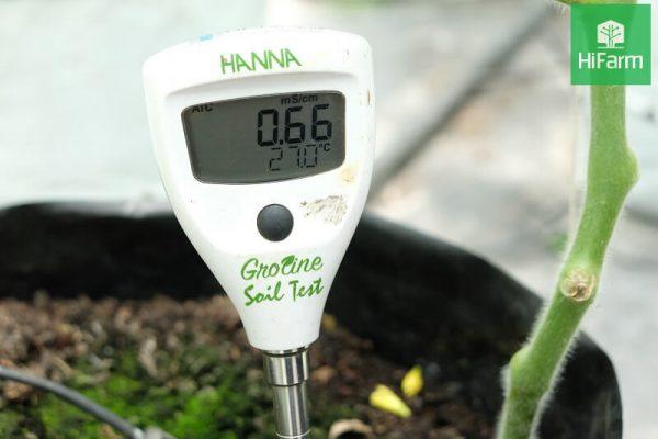 Ưu điểm của nông nghiệp công nghệ cao