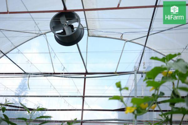 Xu hướng phát triển nông nghiệp công nghệ cao