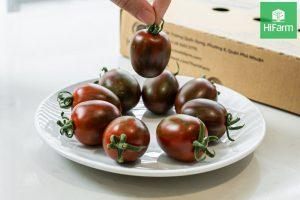 Mua cà chua sạch ở đâu