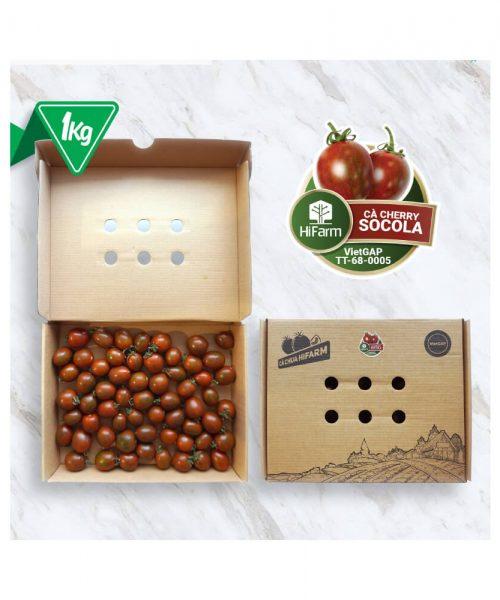 cà cherry socola hifarm