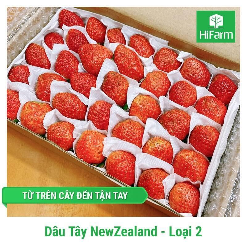 Dâu New Zealand (Loại 2)