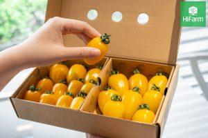 Nên ăn bao nhiêu quả cà chua mỗi ngày