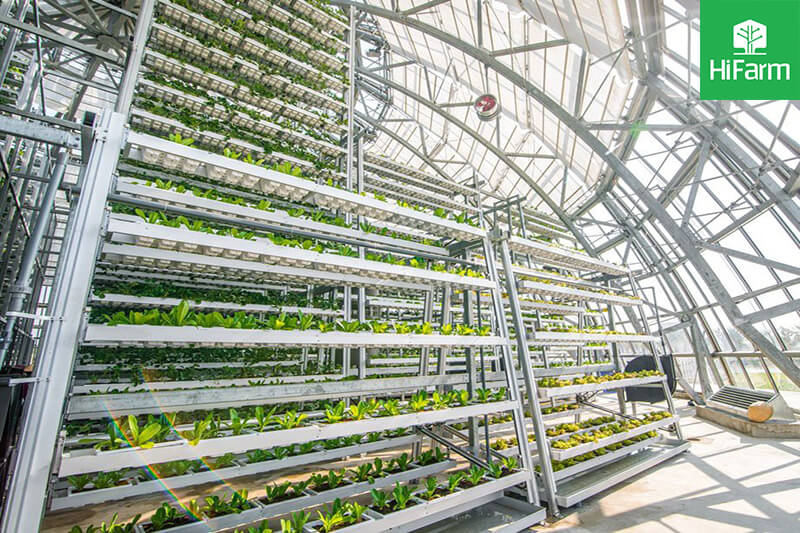Hướng đi đột phá của Việt Nam với mô hình nông nghiệp công nghệ cao