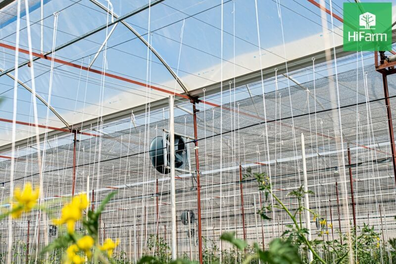Phát triển bền vững nhờ công nghệ cao trong nông nghiệp