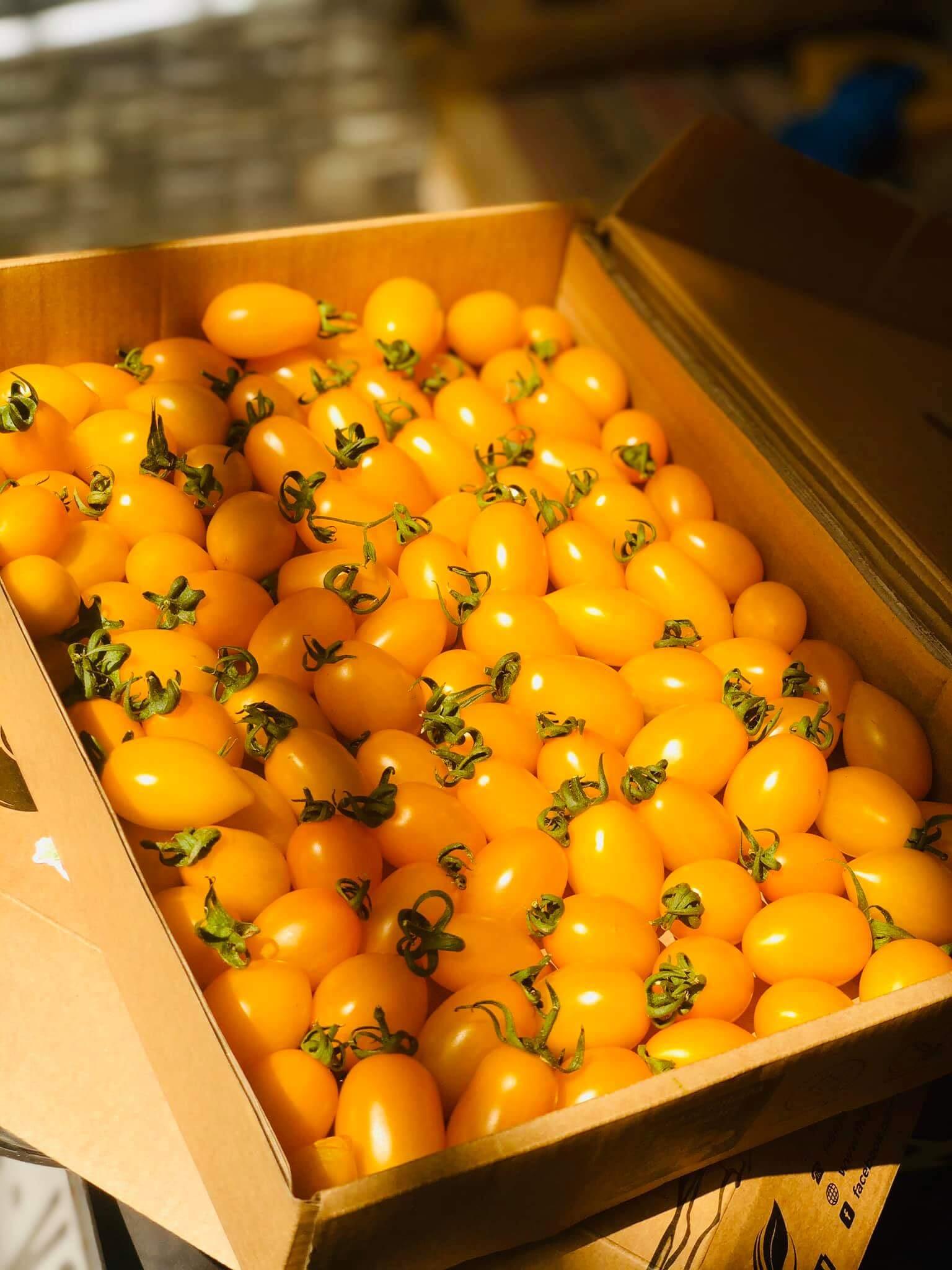 Nông sản HiFarm