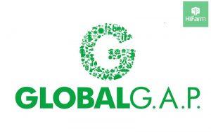 Chứng nhận GlobalGAP – tiêu chuẩn hàng đầu về ngành nông nghiệp