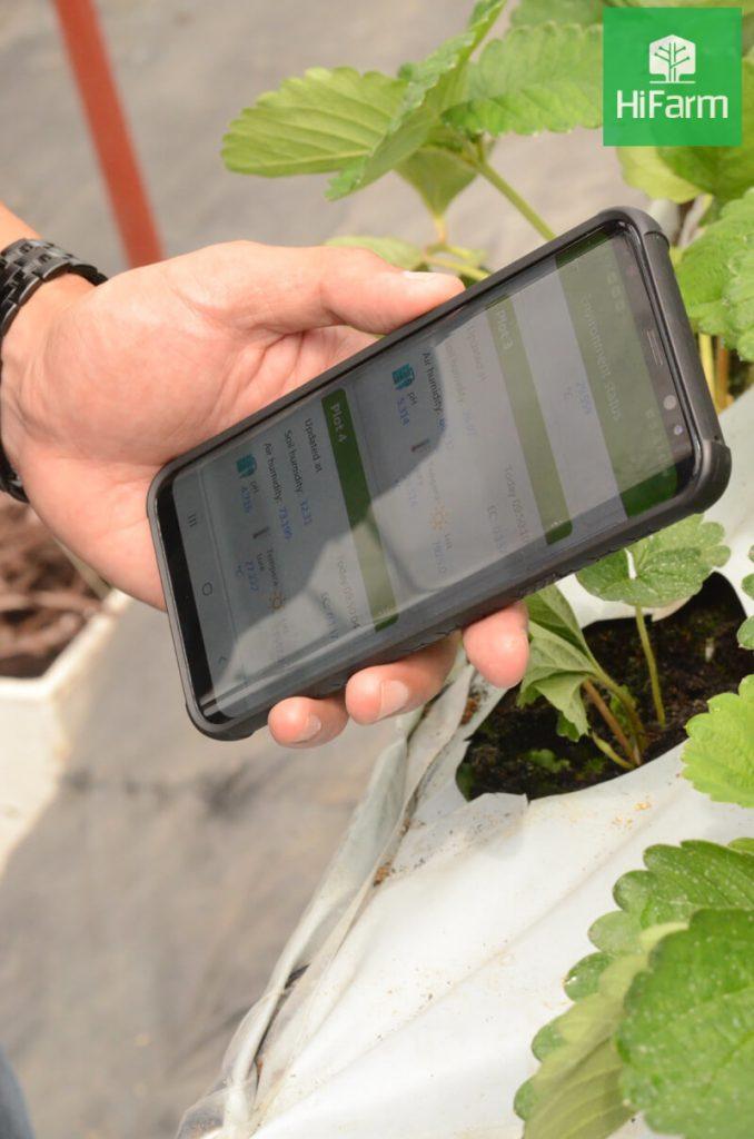 Giải pháp nông nghiệp công nghệ cao HiFarm - xu hướng phát triển nông nghiệp hiện nay