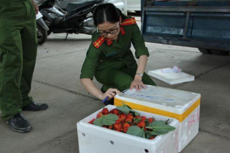 Dâu tây không rõ nguồn gốc tràn vào thị trường Việt Nam
