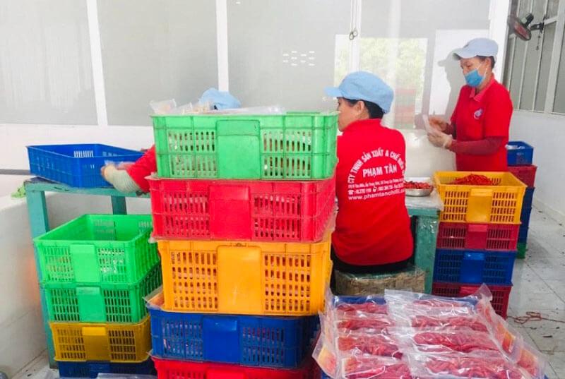 Giá ớt tại TP Hồ Chí Minh tăng cao 'chóng mặt' do thiếu nguồn cung
