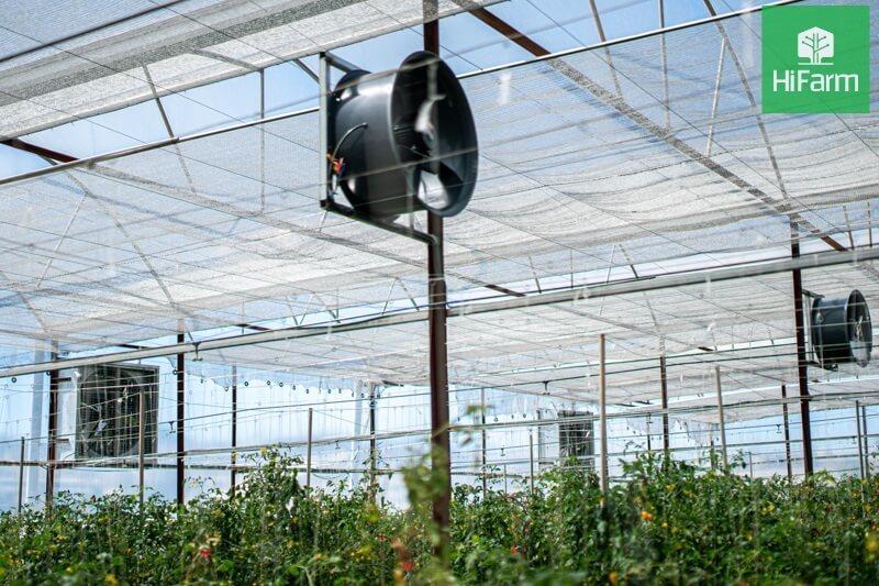 Nông dân tăng thu nhập nhờ khai thác giá trị nông sản theo hướng nông nghiệp hữu cơ