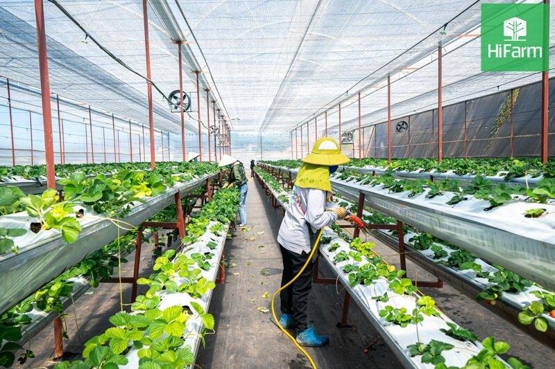 Cơ hội nào để thay đổi mọi thứ trong nông nghiệp
