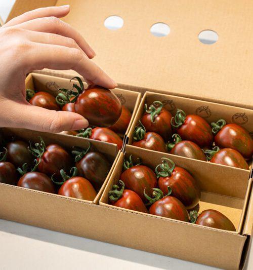 Top 5 thực phẩm tăng đề kháng để bảo vệ cơ thể