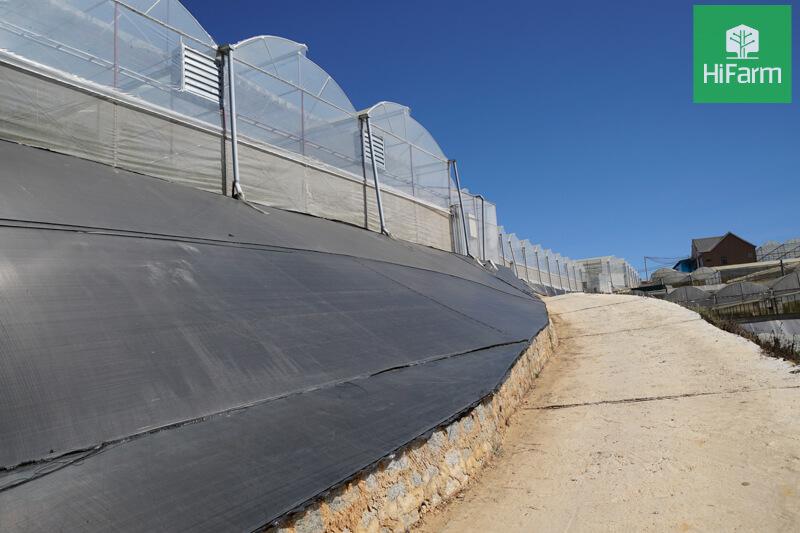 Nông nghiệp 4.0 cần bắt đầu từ bớt phân thuốc